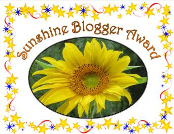 sunshine-blogger-3